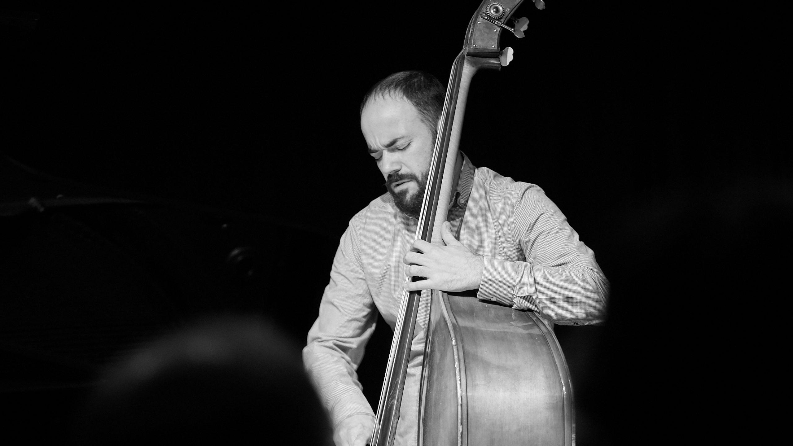 Kontrabass, Musiker, Jazz, Bassist