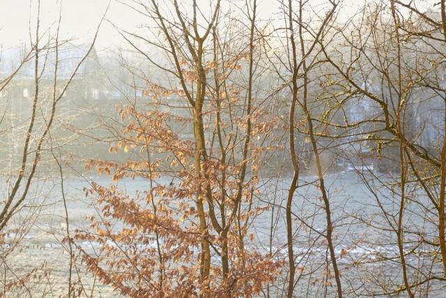 Fall, Winter, Lichtspiele, Sonnenschein, Landschaft